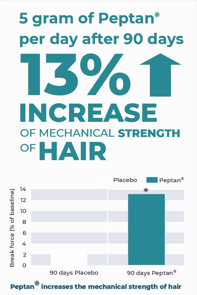 Peptan Graph Hair – Only