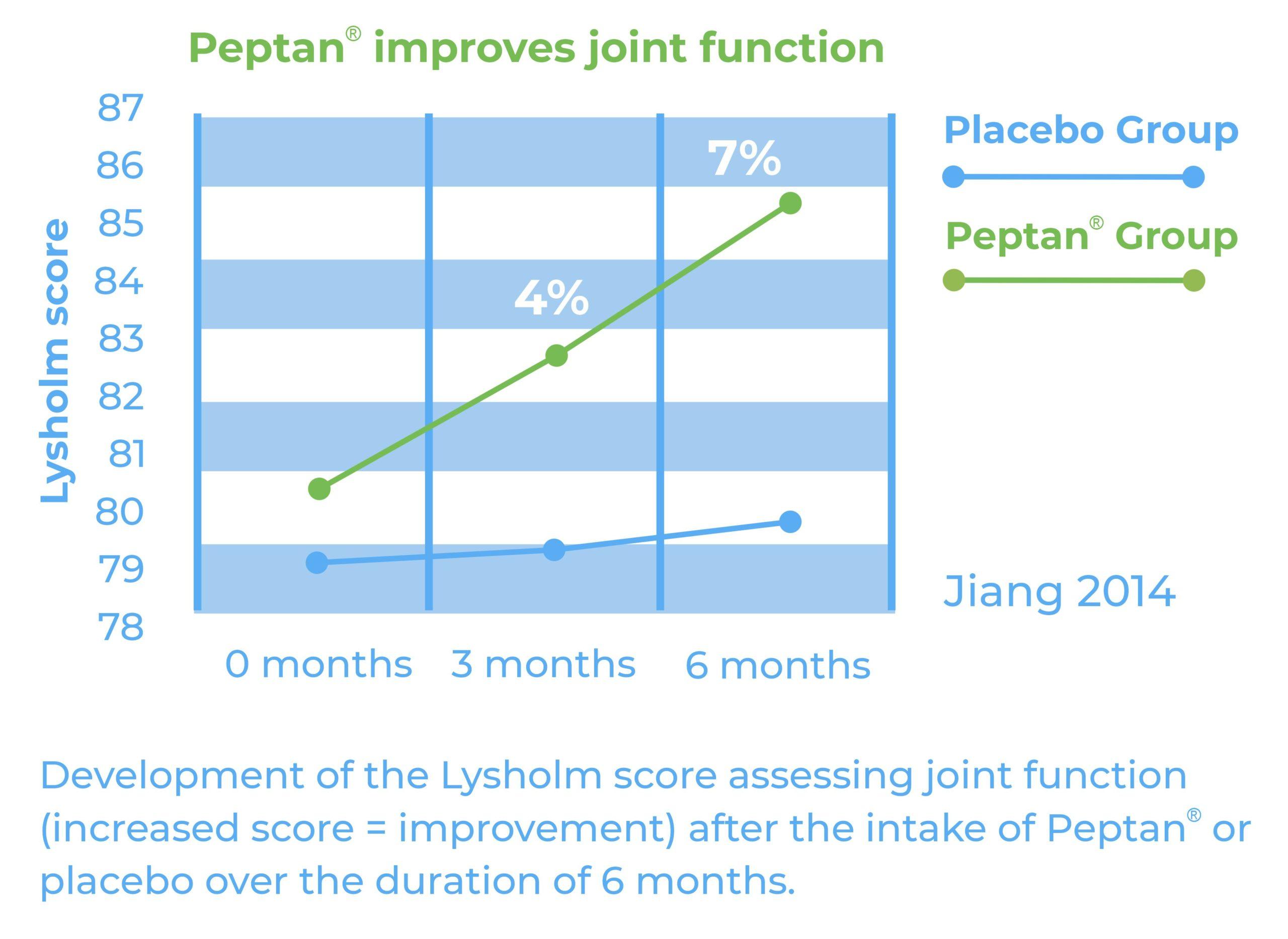 Peptan Lysholm Score