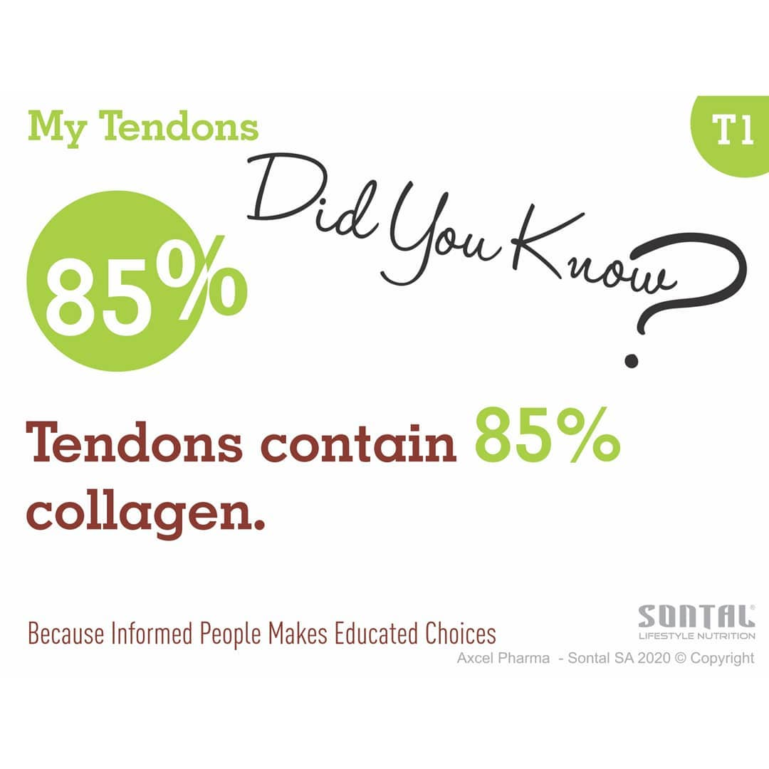 my tendons contaion 85 collagen
